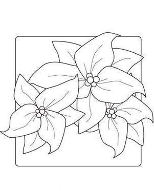 Poinsettia Coloring Pages Free Worksheet 159 Free Printable