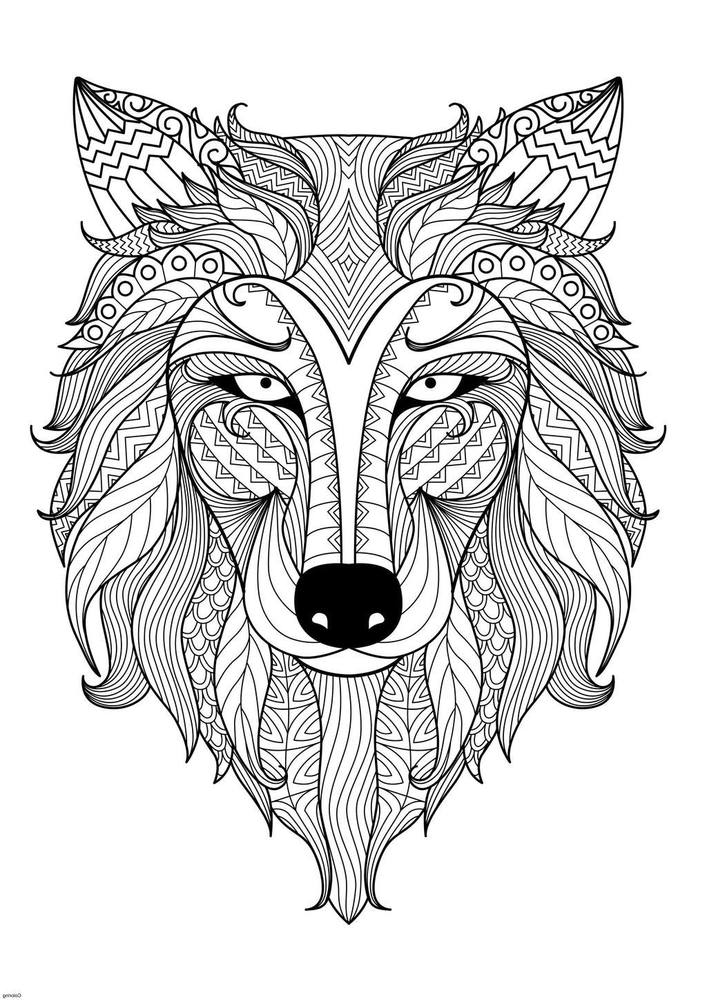 Animal Mandala Coloring Pages Adult Zentangle Line Drawing