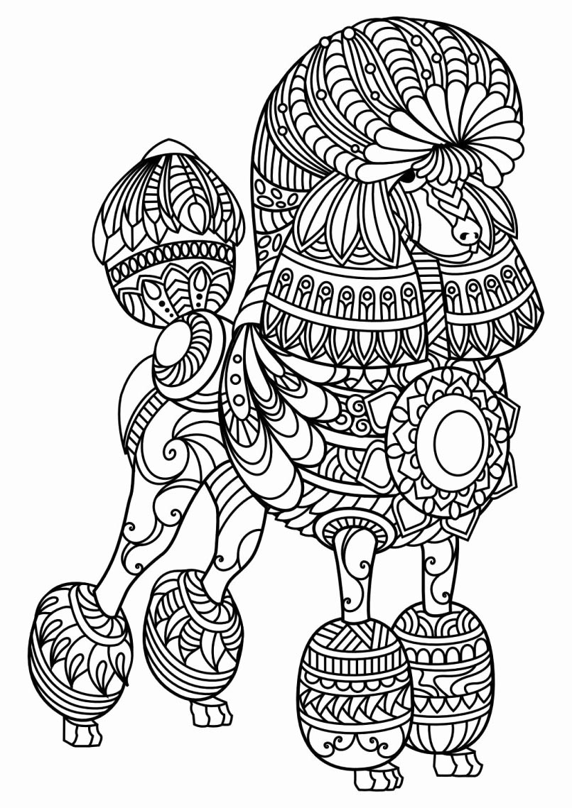 Animal Mandala Coloring Pages Characters