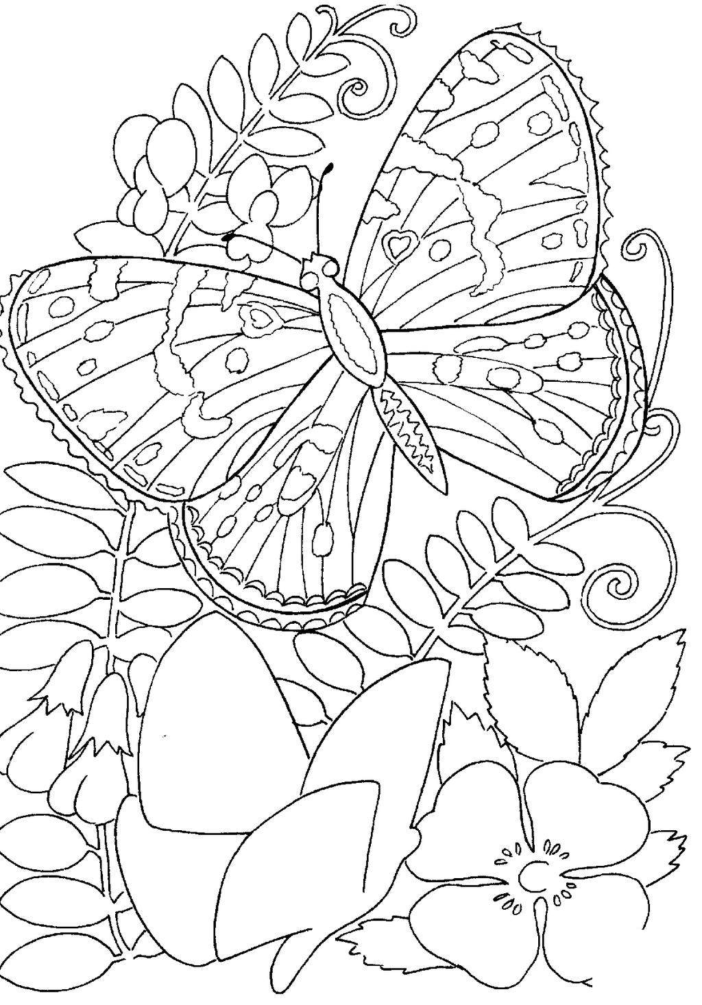 Free Butterfly And Flower Coloring Pages Among Flowers Coloring Sheets printable