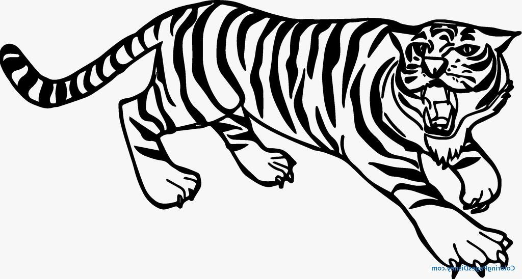 Tiger Coloring Pages In Realistic