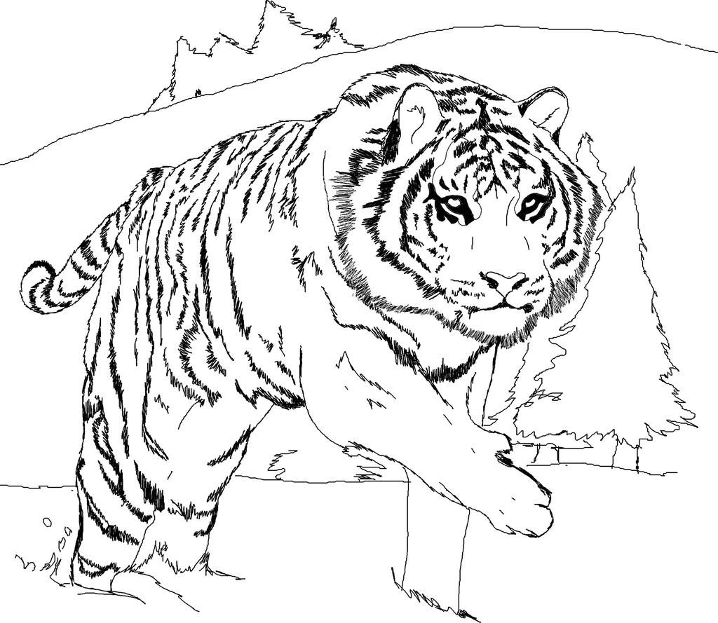 Tiger Coloring Pages Kids Activity - Free Printable Coloring Pages