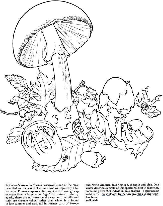Free Trippy Coloring Pages Printable Pictures 57 printable