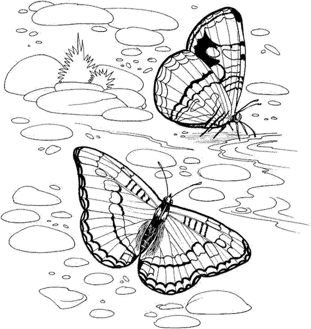 Adults Nature Coloring Pages Outstanding Kids - Free Printable ...