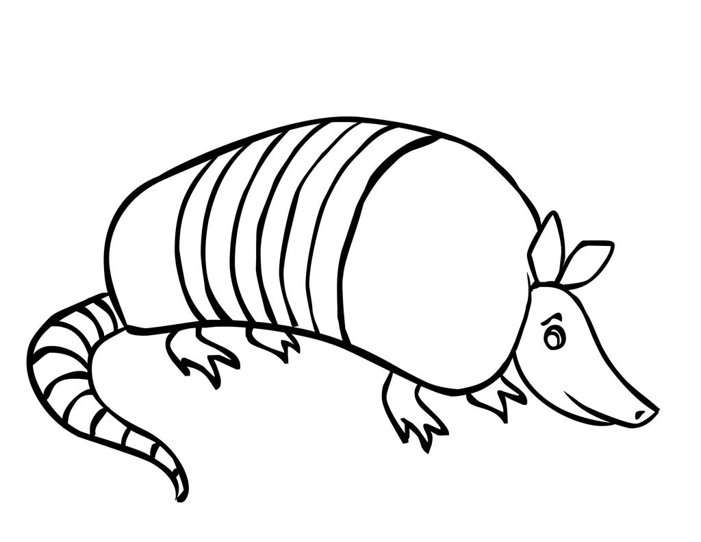 Armadillo Coloring Pages Texas Unit Coloring Sheets Free Printable