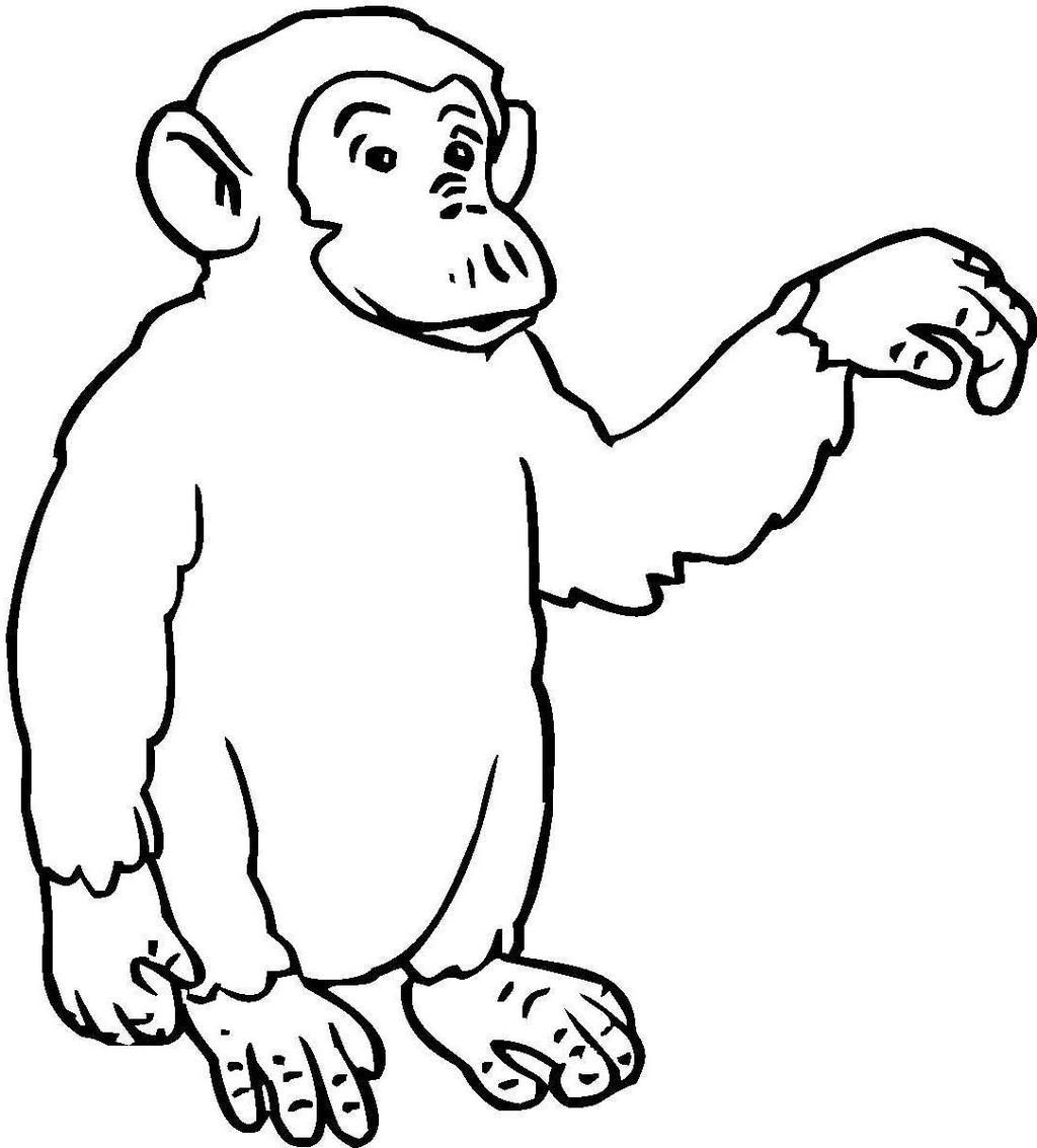 space chimps coloring book pages - photo#5