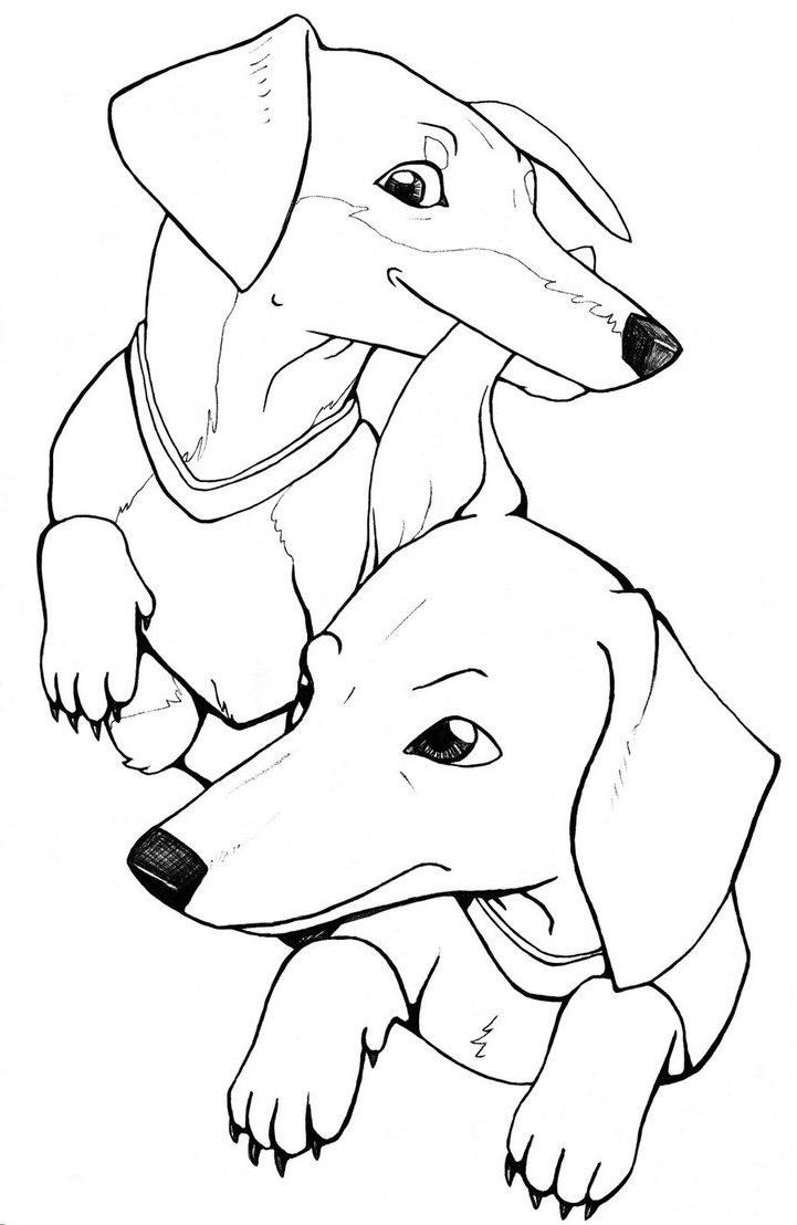 Dachshund Coloring Pages Dog Breed Characters Free Printable