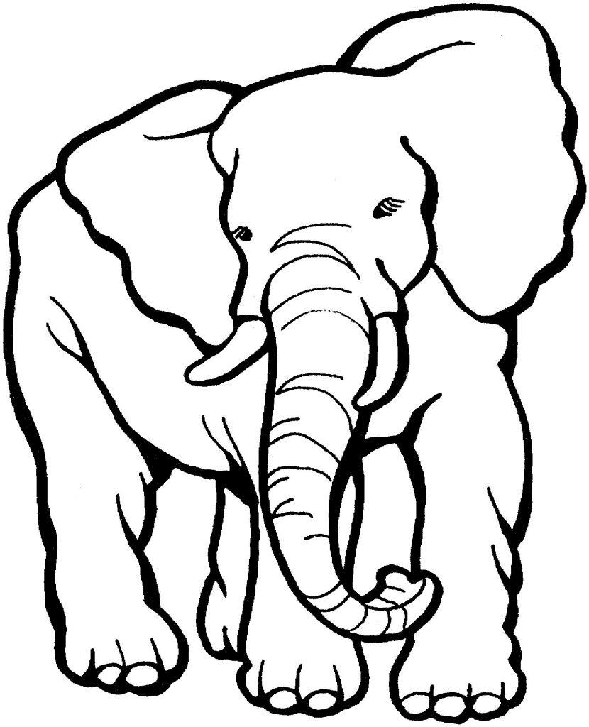 photograph regarding Elmer the Elephant Printable called Elmer The Elephant Coloring Internet pages Publimas Co - Free of charge
