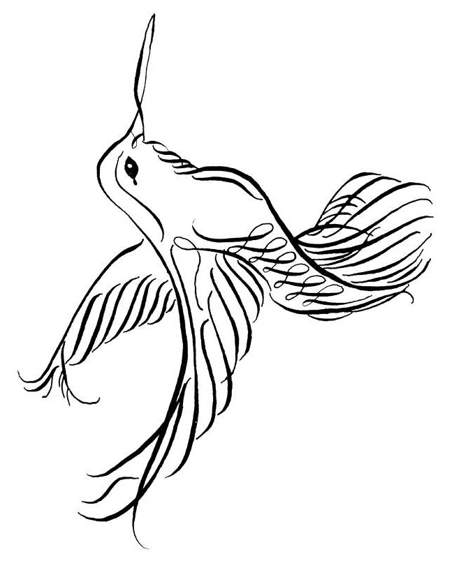 Hummingbird Coloring Pages Animal Sheets Images - Free Printable ...