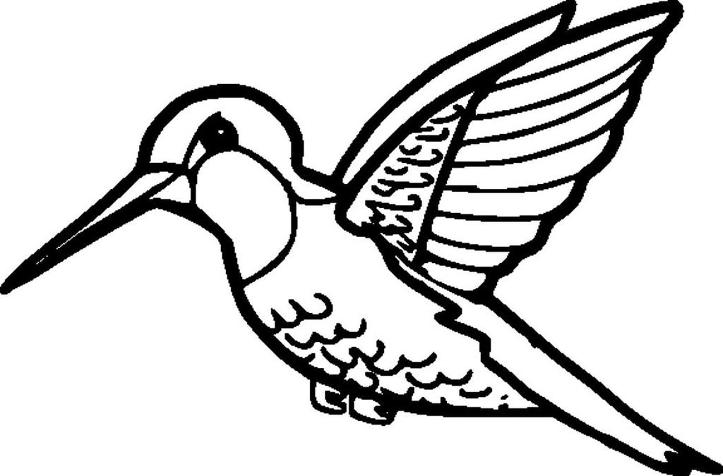 Hummingbird Coloring Pages High Quality Coloring Book - Free ...