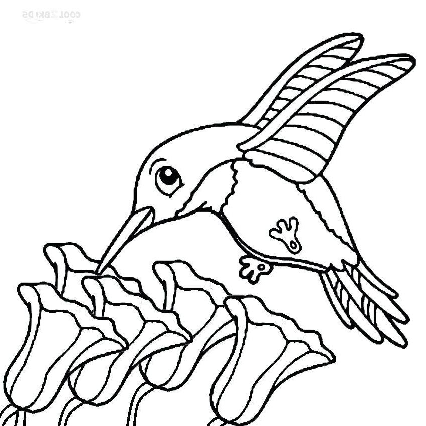 Hummingbird Coloring Pages Hummingbirds Birds Characters - Free ...