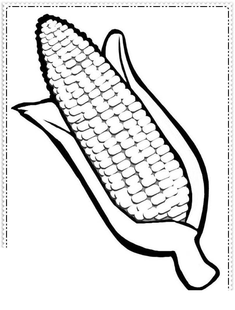 Free Indian Corn Coloring Pages Thanksgiving Pinterest Clipart printable