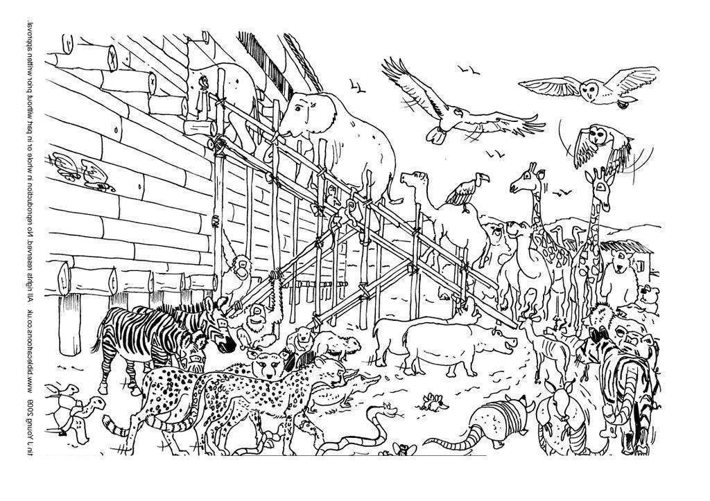 Noah The Ark Coloring Pages Animal High Online - Free Printable ...