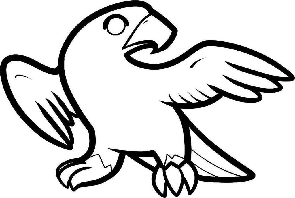Osprey Bird Coloring Pages Falcon