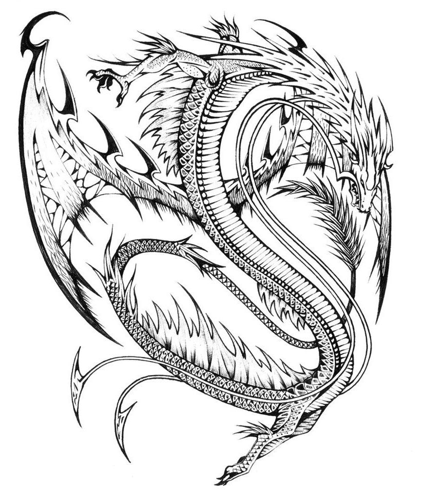 Free Printable Dragon Coloring Pages Pinterest Clipart printable