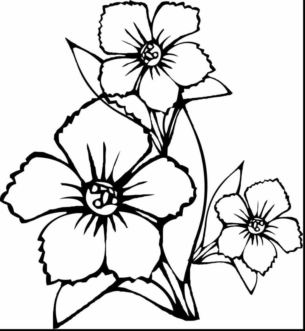 Realistic Flower Coloring Pages Unusual Idea - Free ...