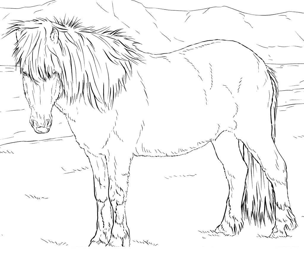 Realistic Horse Coloring Pages Horses Clipart - Free Printable ...