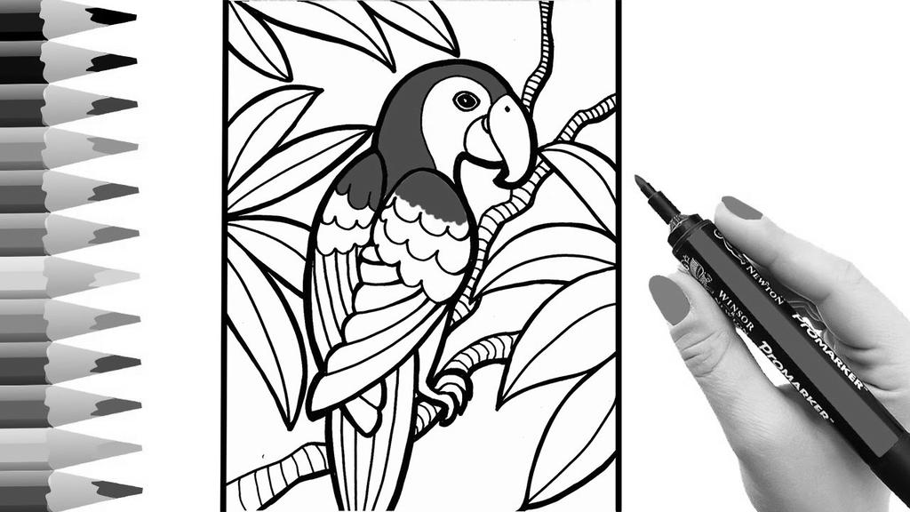 Free Macaw Coloring Pages Scarlet Parrot printable
