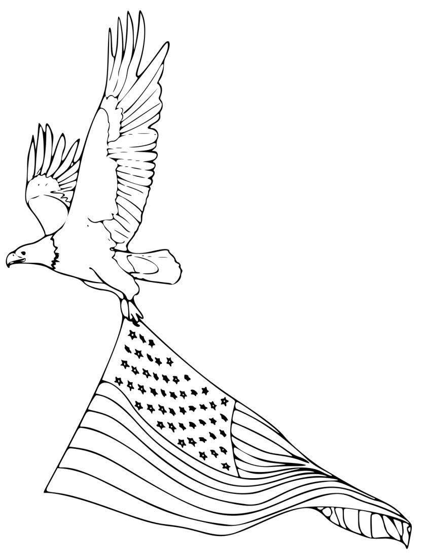 Bald Eagle Coloring Pages Americanstar Clipart Free