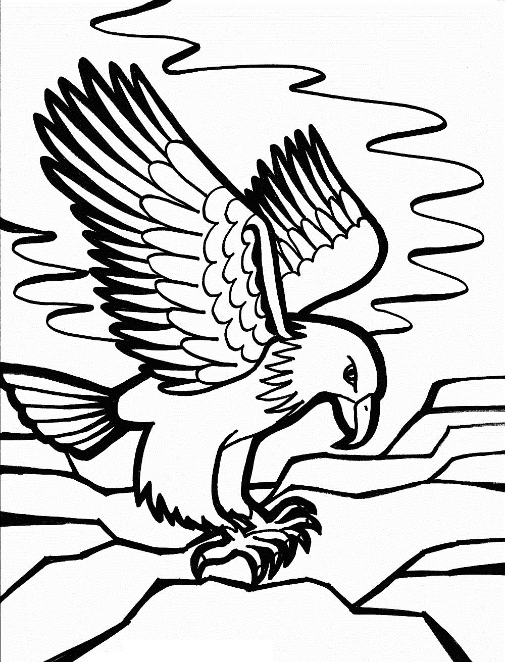 Free Bald Eagle Coloring Pages Kids School printable
