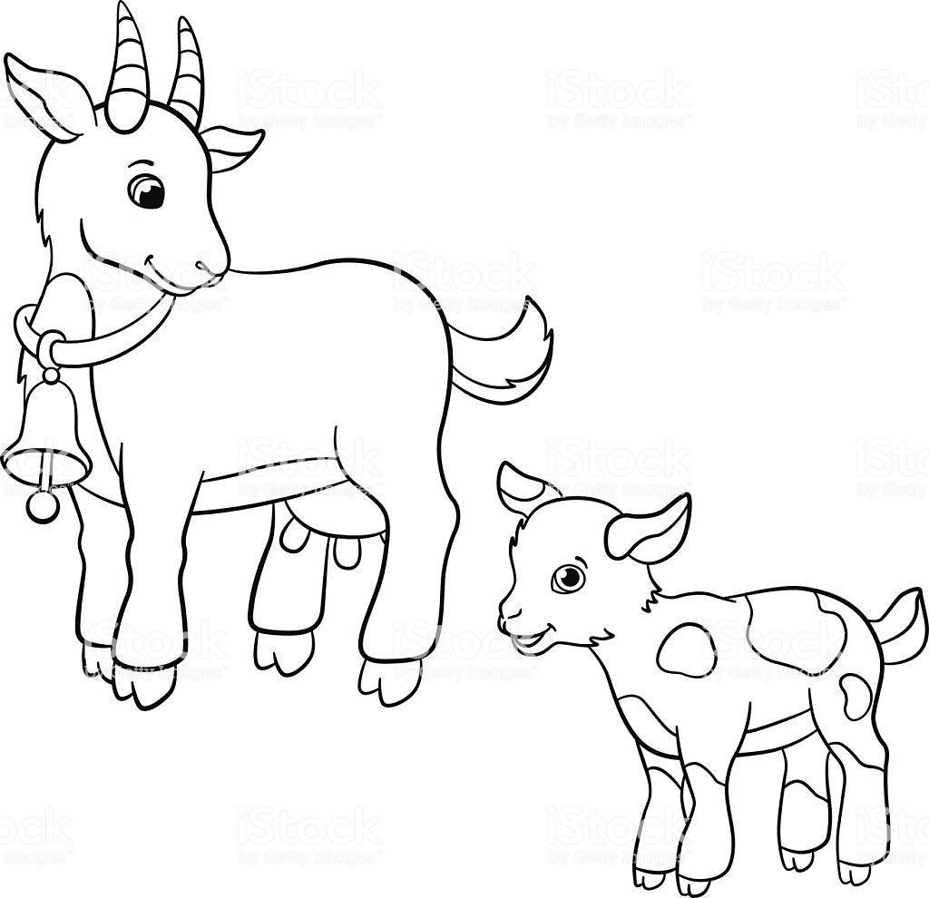 domestic animals coloring pages clipart free printable coloring pages. Black Bedroom Furniture Sets. Home Design Ideas