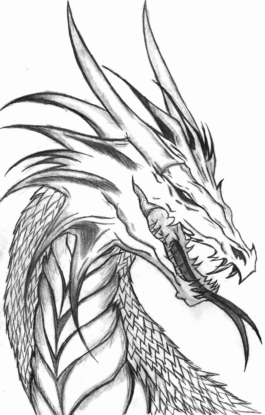 Free Evil Dragon Adults Coloring Pages Clipart printable