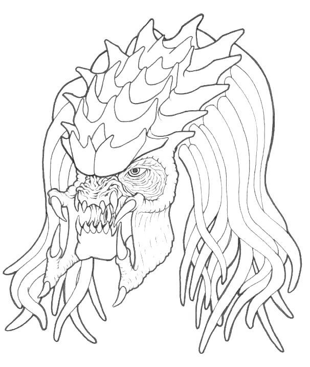 Free Predator Coloring Pages 120 Sketch printable