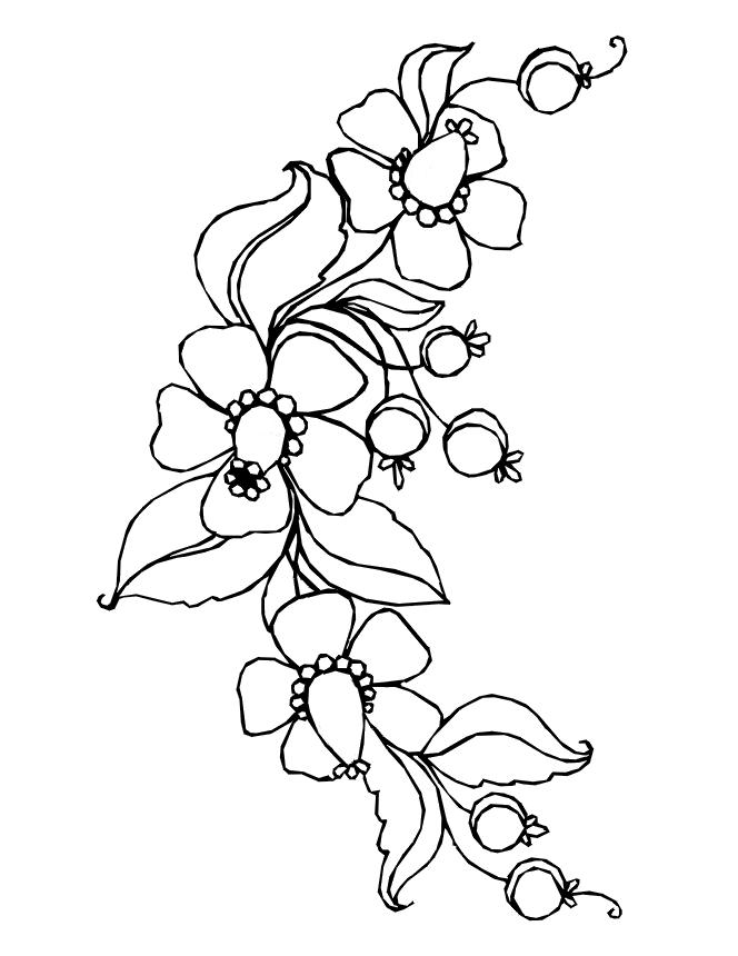 image regarding Flower Outline Printable known as Printable Might Bouquets Coloring Webpages 57 Define - Totally free