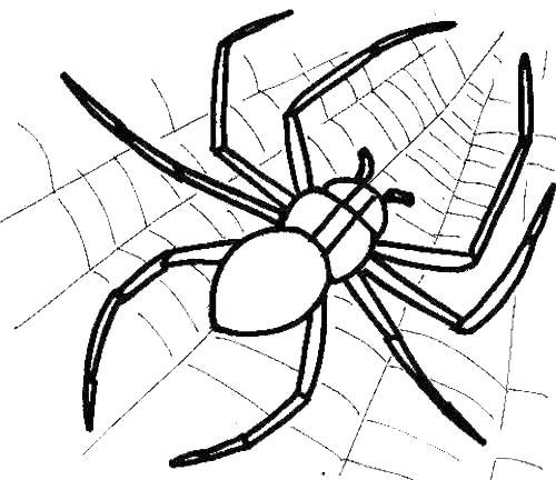 Free Iron Spider Coloring Pages Spider on the Web printable