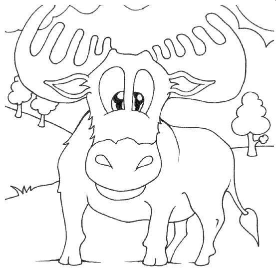 Free Moose Coloring Pages Cartoon for Boys printable