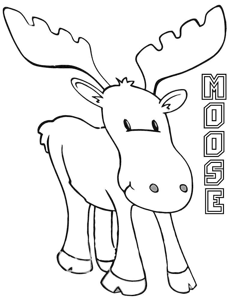 Free Moose Coloring Pages Drawing Pictures printable