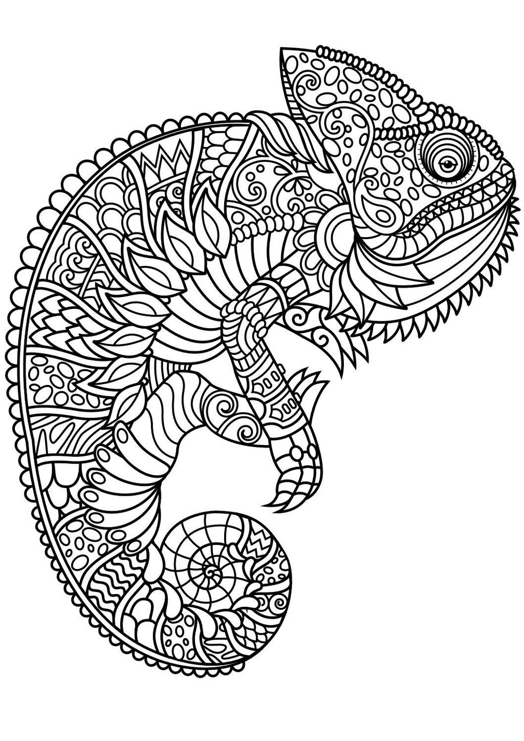 Lizard Mindfulness Coloring Pages Free Printable