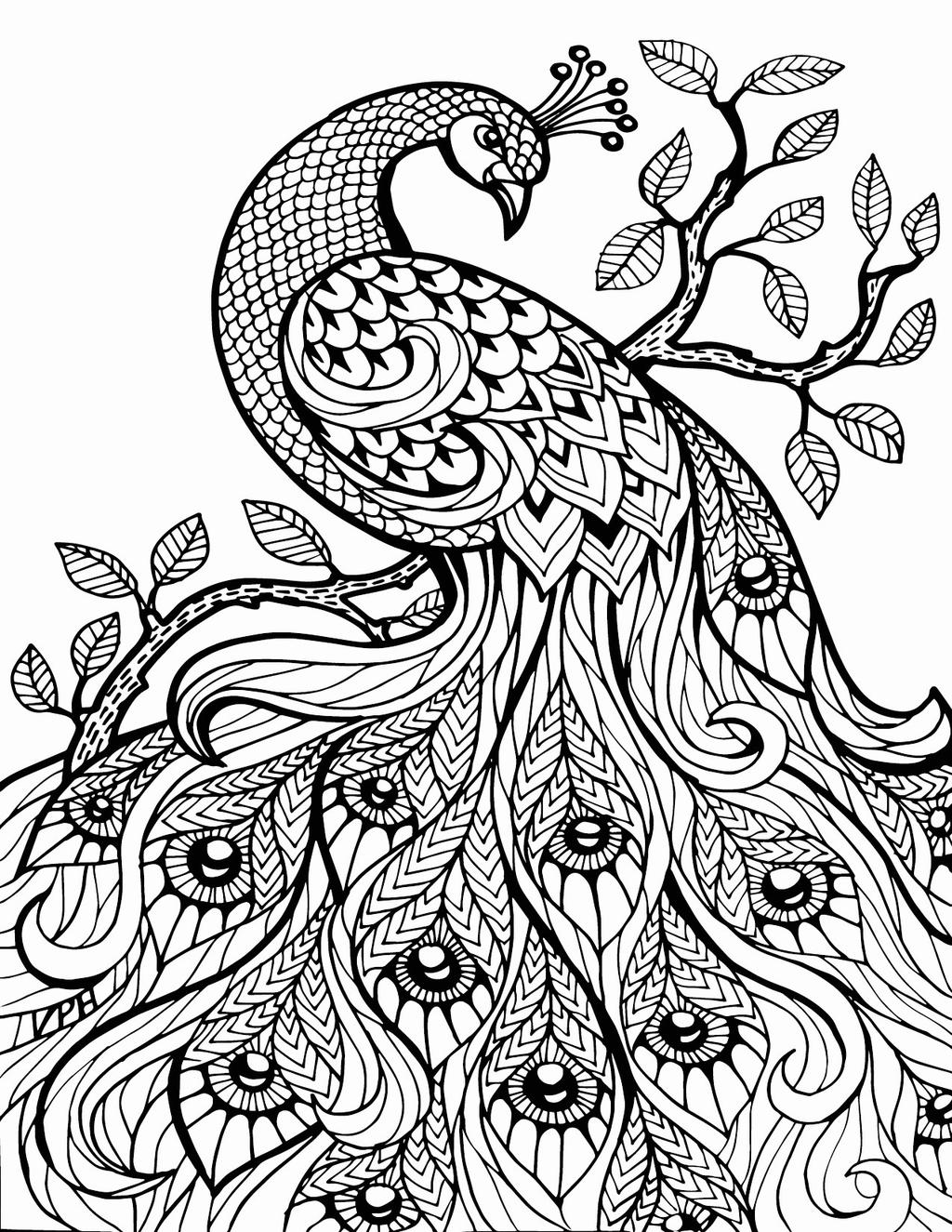 Free Peacock Aesthetic Coloring Pages printable