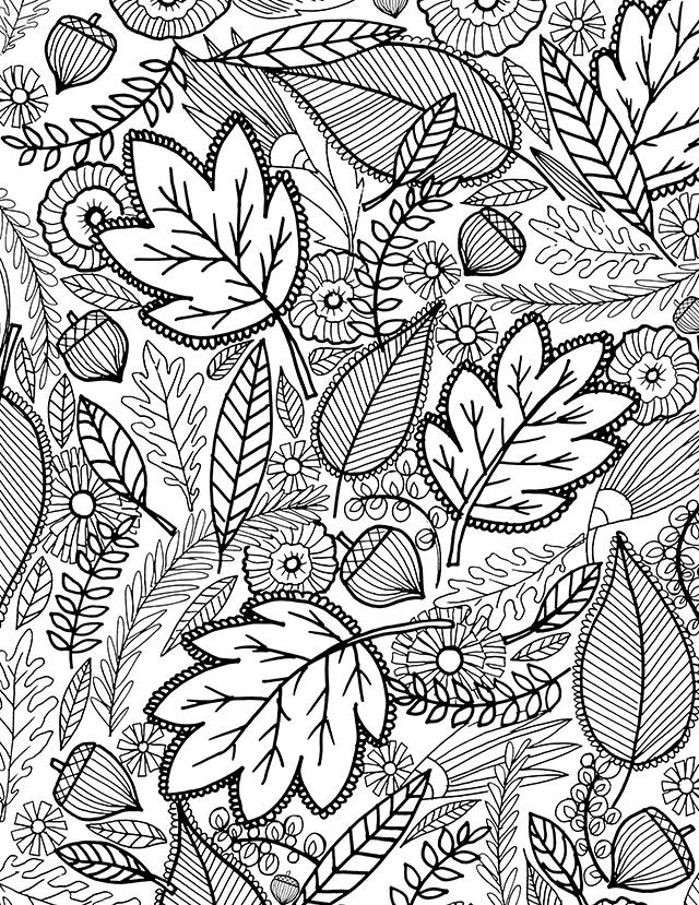 September Coloring Pages Leaves Line Drawing - Free ...
