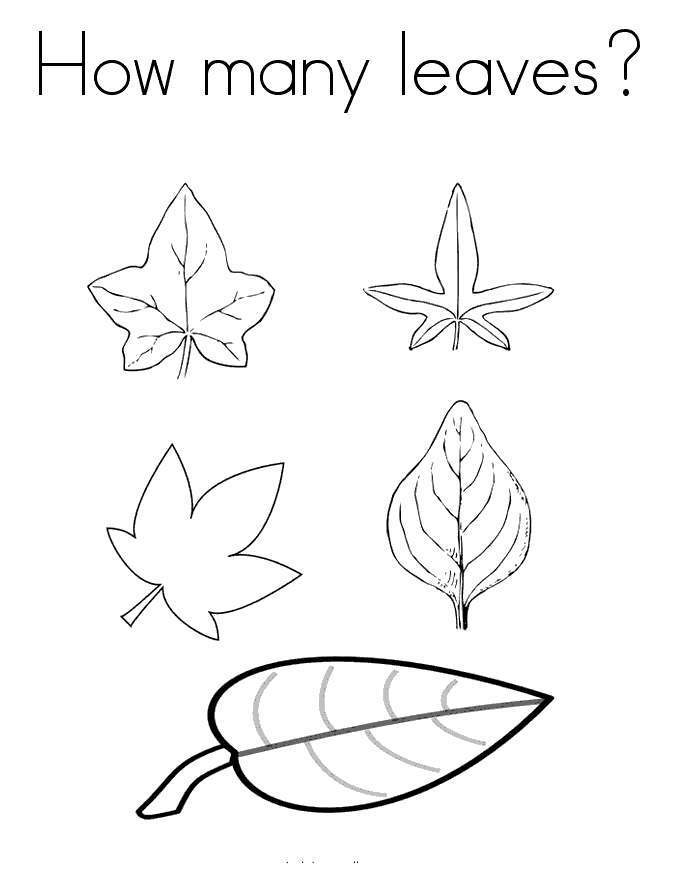 Free September Coloring Pages Math Activity printable