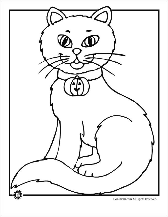Free Black Cat With Bell Coloring Pages printable