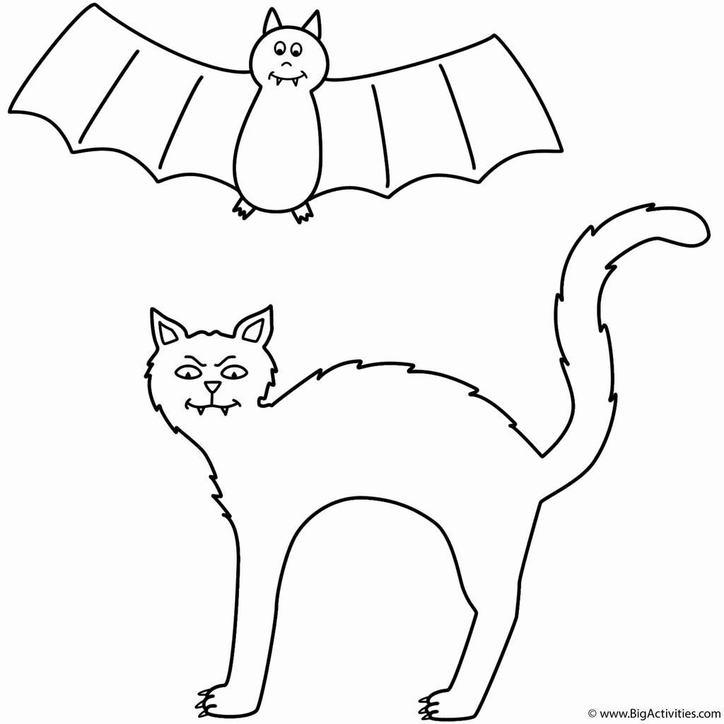 Black Cat and Flying Bat Coloring Pages Free Printable