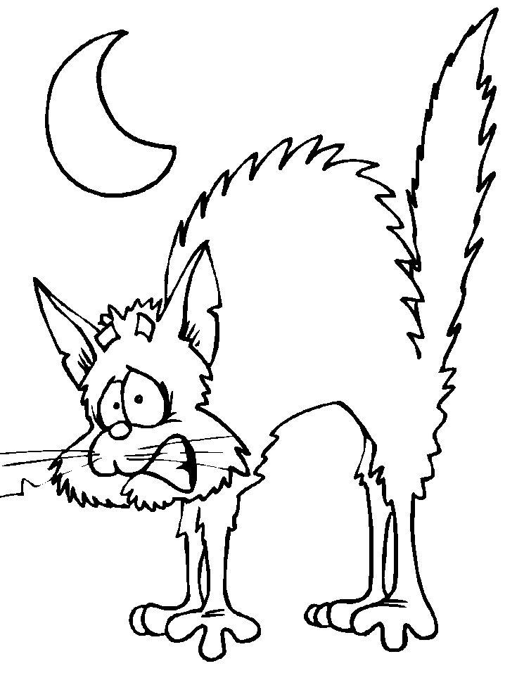 Free Moon and Black Cat Coloring Pages printable